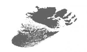 Logo congreso AIBR